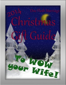Christmas Gift Guide to Wow Your Wife – 2014 …